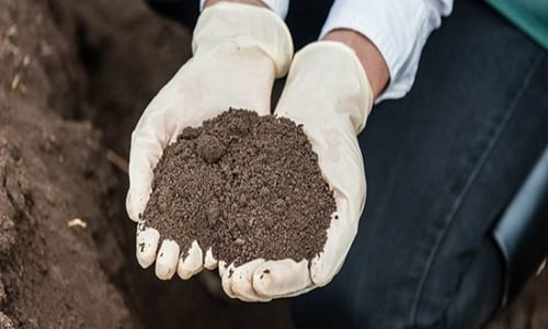 soil conditioning